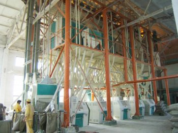 100TPD Wheat Flour Plant in Aswan Egypt