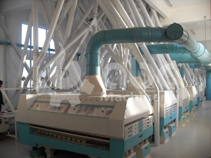300TPD refined wheat flour mill project in Algeria