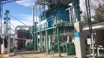 30TPD flour mill plant installation in Chile