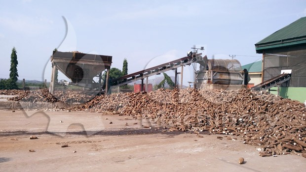 Cassava Flour Production Business Plan in Nigeria