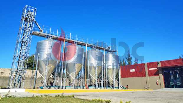 100 Ton Maize Silo Ship To Mozambique