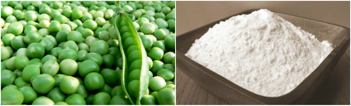 pea starch processing